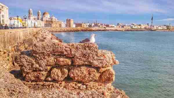 Excursión de Cádiz